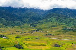 Berglandschaften mit Reisterrassen