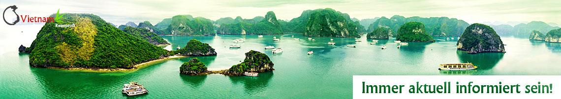 Vietnam Newsletter
